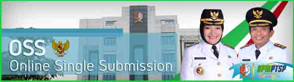 Online Single Submission (OSS)
